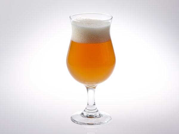 American Pale Ale in tulip glass