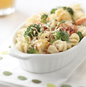 Spiral pasta with cheese and broccoli covered in alfredo sauce