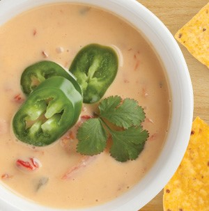 Yellow queso dip with tomato chunks, sliced jalapenos, and fresh cilantro
