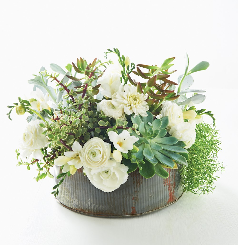 Succulents with White Flours in a Rustic Pot