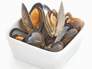 Shell Muscles in a Bowl