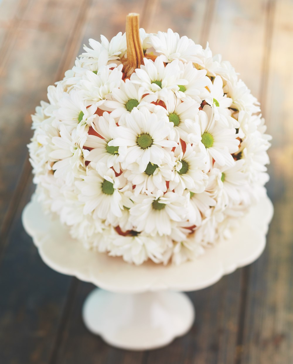 White mums placed over pumpkin on a white cake stand