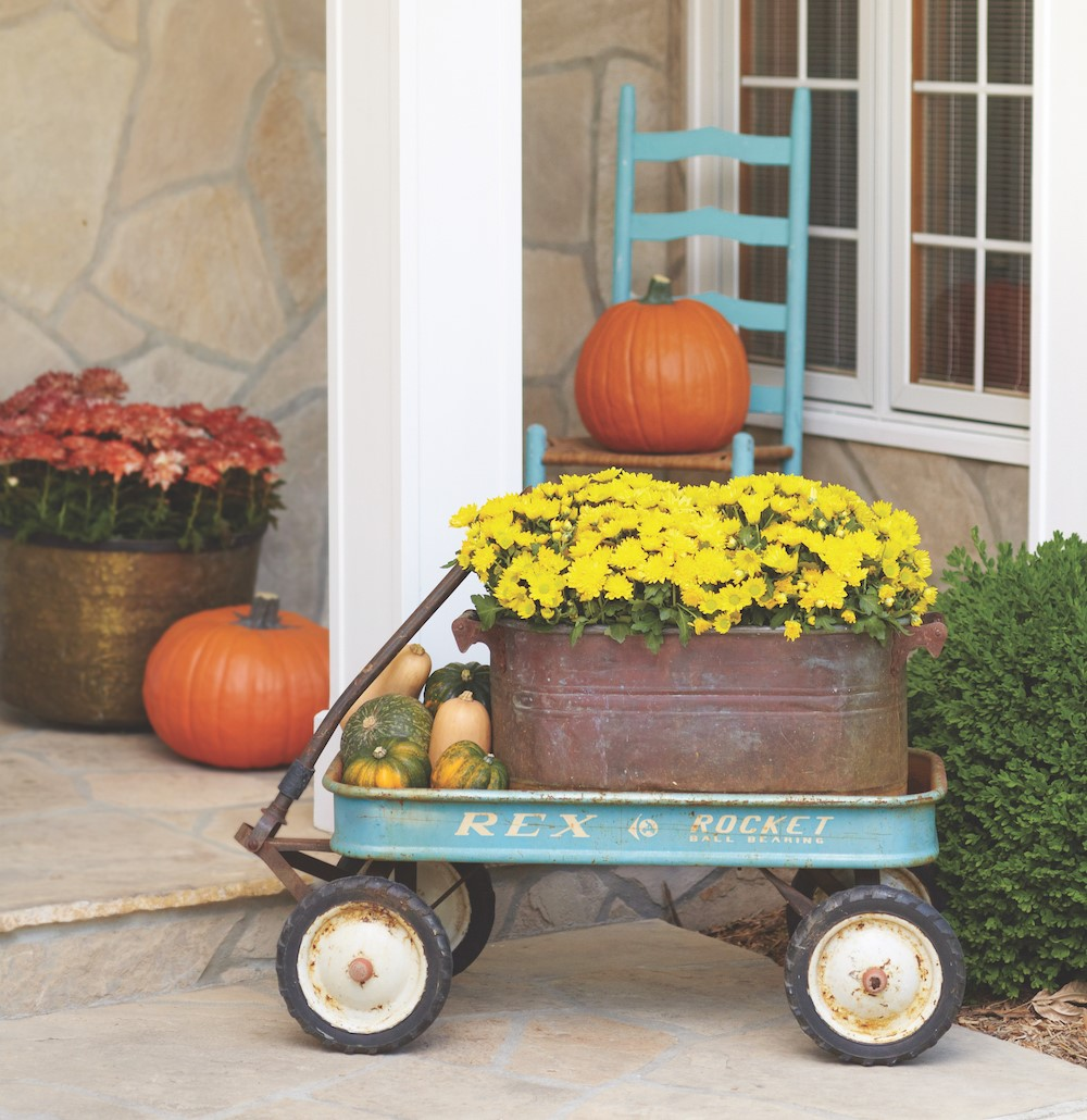 Yellow mums in a rustic pot son a blue wagon surrounded by pumpkins and various squashes