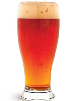 Sierra beer in glass