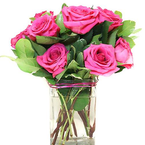Rose Enchantment
