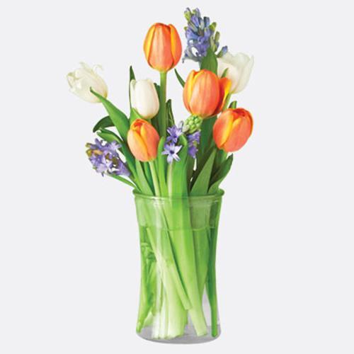 Spring Bulb Bouquet
